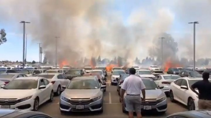 Chain-Dragging Semi Sparks Brush Fire Incinerating $2.1 Million in Cars at CarMax