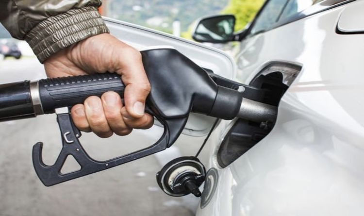 E10 biofuel: 700,000 cars to stop running on petrol next year – Is your car one of them?