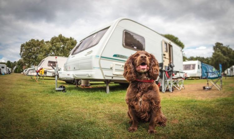 Caravans: How drivers can safely look after pets on staycation this summer – expert advice