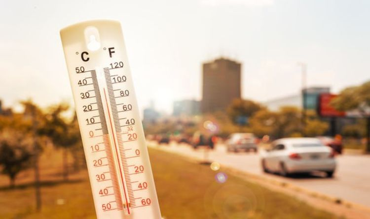 Drivers warned not to leave six items in cars during heatwave – how to avoid an accident